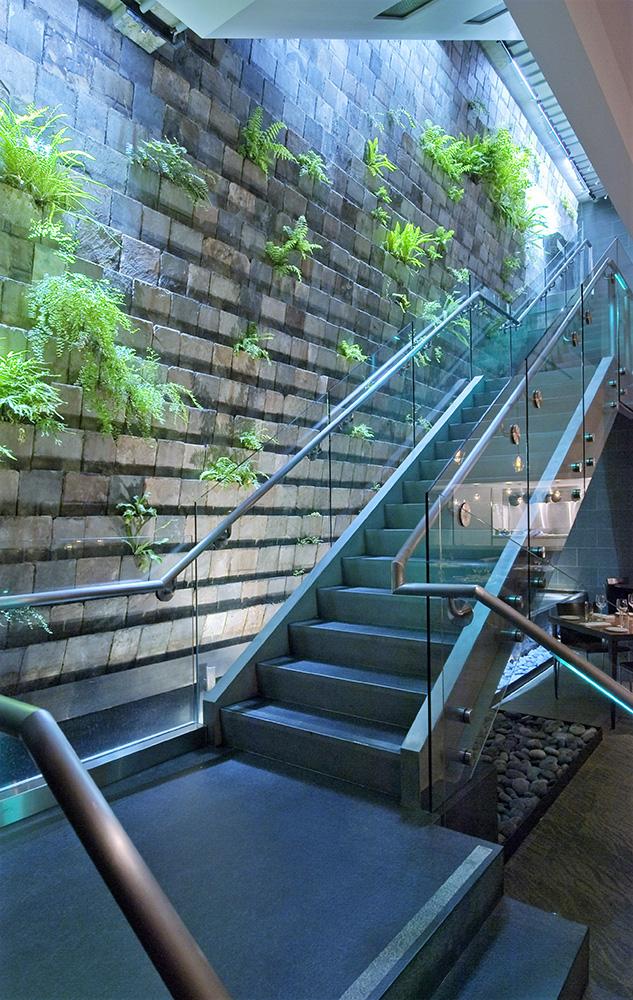 California Academy Of Sciences, Moss Room: Railings & Gates